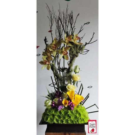 Orquídeas amarillas y follaje verde