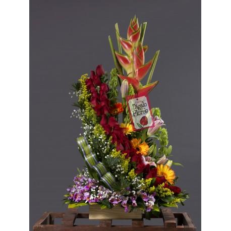 Arreglo floral, rojo, amarillo, aves del paraíso domicilios de flores