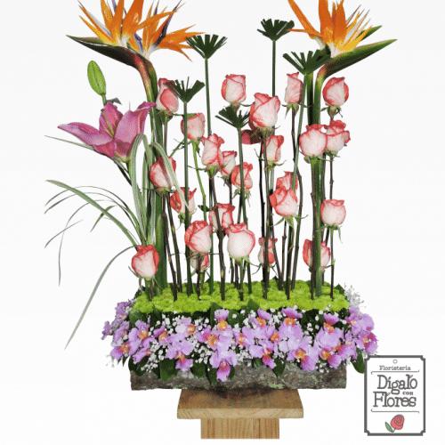 Aves del paraíso, lirios y orquídeas